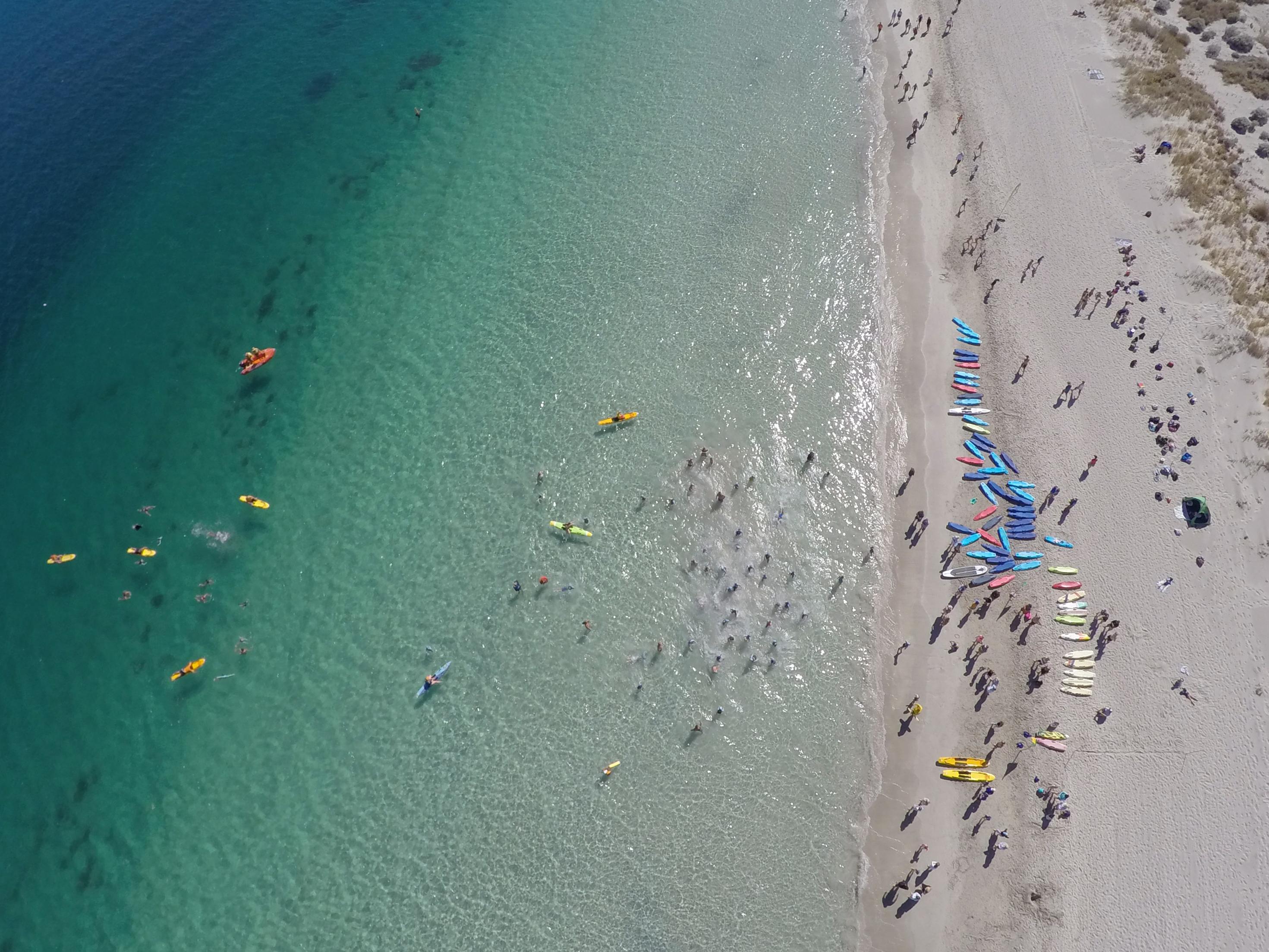 Surf Life Saving2